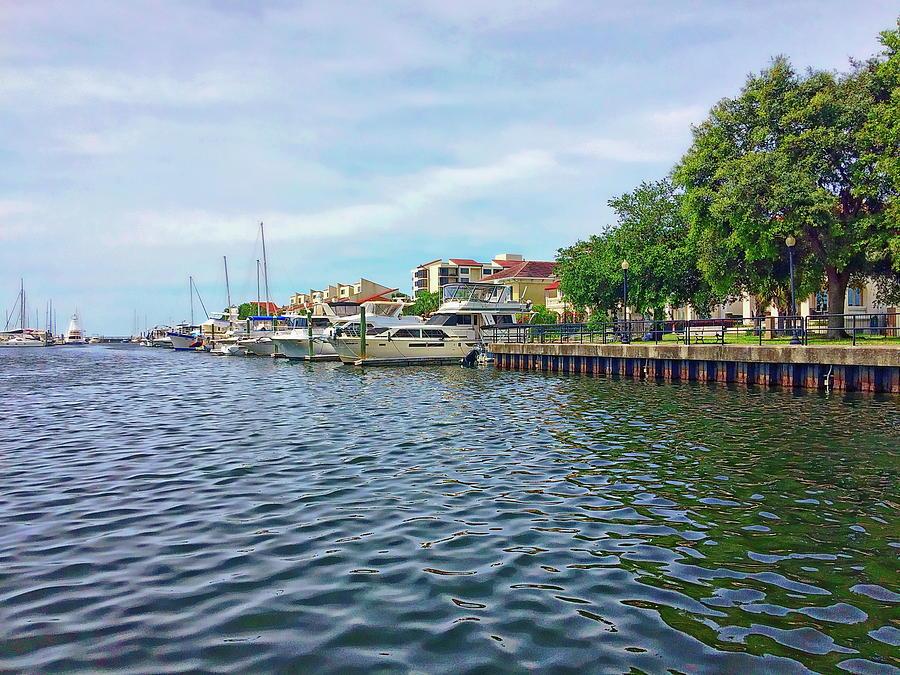 Pensacola Bay by Anthony Dezenzio