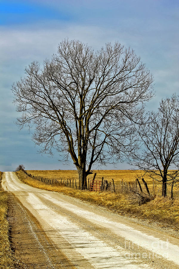 Missouri County Road In Winter Photograph