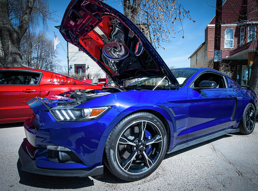 2016 Mustang by Philip Rispin