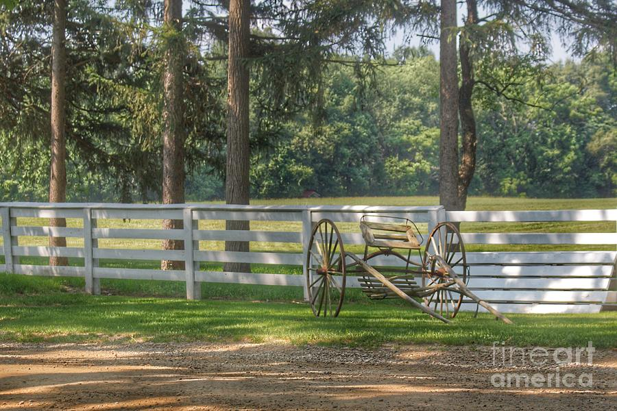 2017 - Thornville Buggy and Fence by Sheryl L Sutter