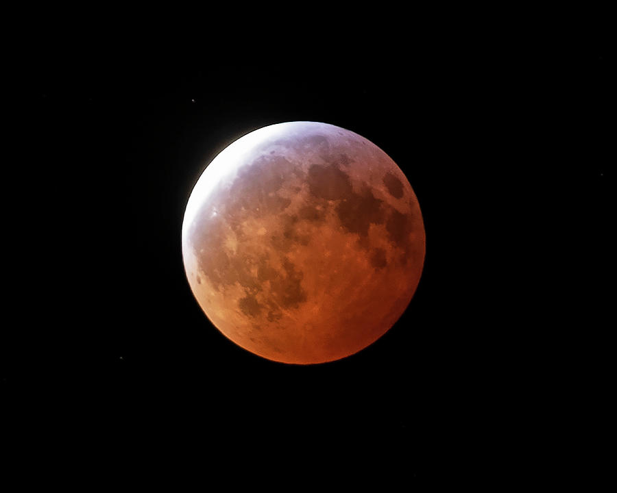 2019 Blood Wolf Super Moon Eclipse Photograph by Toby McGuire