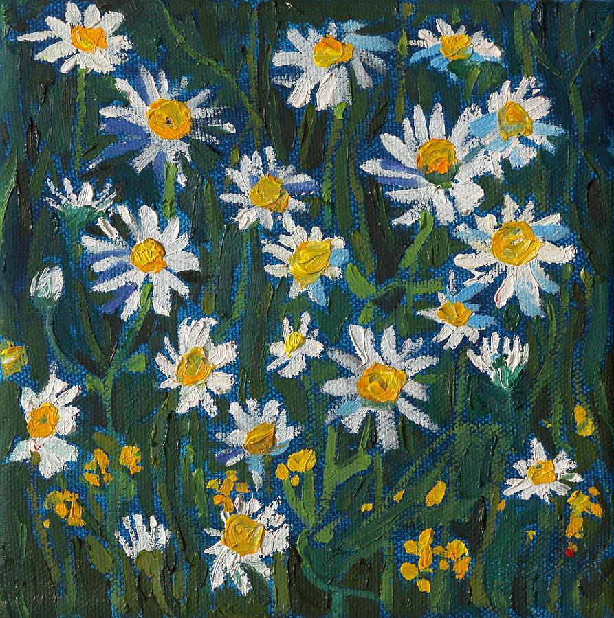 2019 Daisies by Phil Chadwick