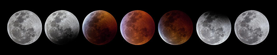 2019 Lunar Eclipse Progression by Dennis Sprinkle
