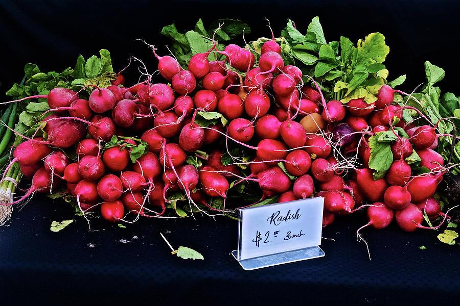 2019 Monona Farmers' Market September Radishes by Janis Nussbaum Senungetuk