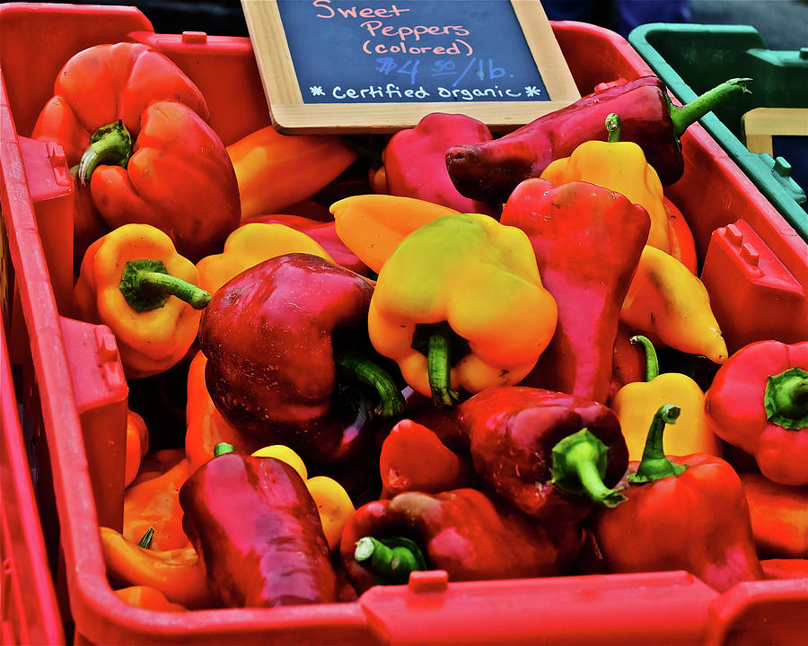 2019 Monona Farmers' Market September Sweet Peppers by Janis Nussbaum Senungetuk