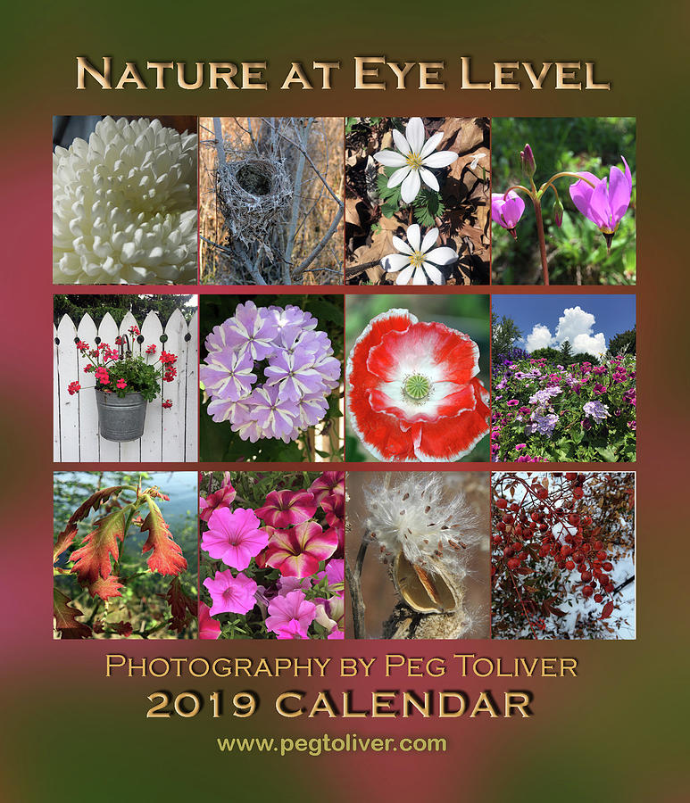2019 Nature Calendar by Peg Toliver