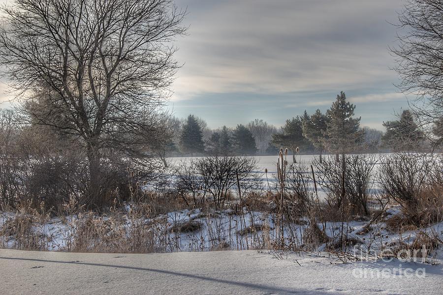 2019 - Winter in Lapeer by Sheryl L Sutter