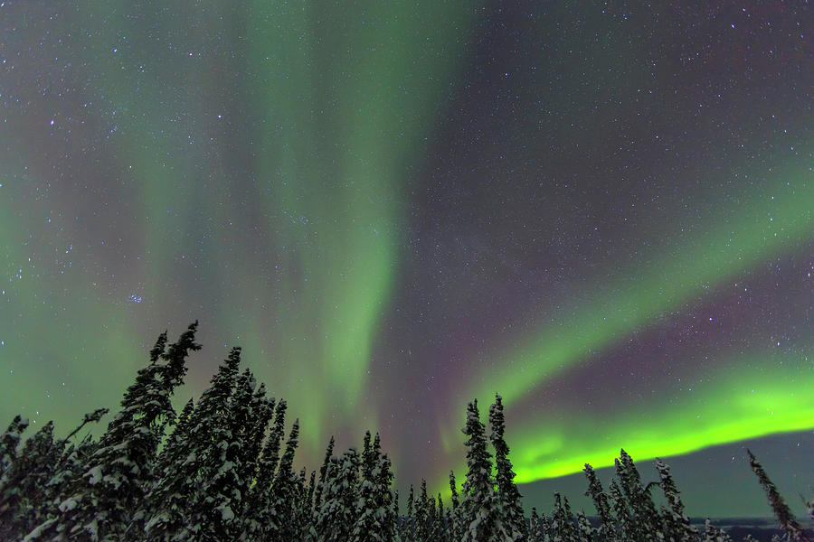 Alaska Photograph - Aurora Borealis, Northern Lights by Stuart Westmorland