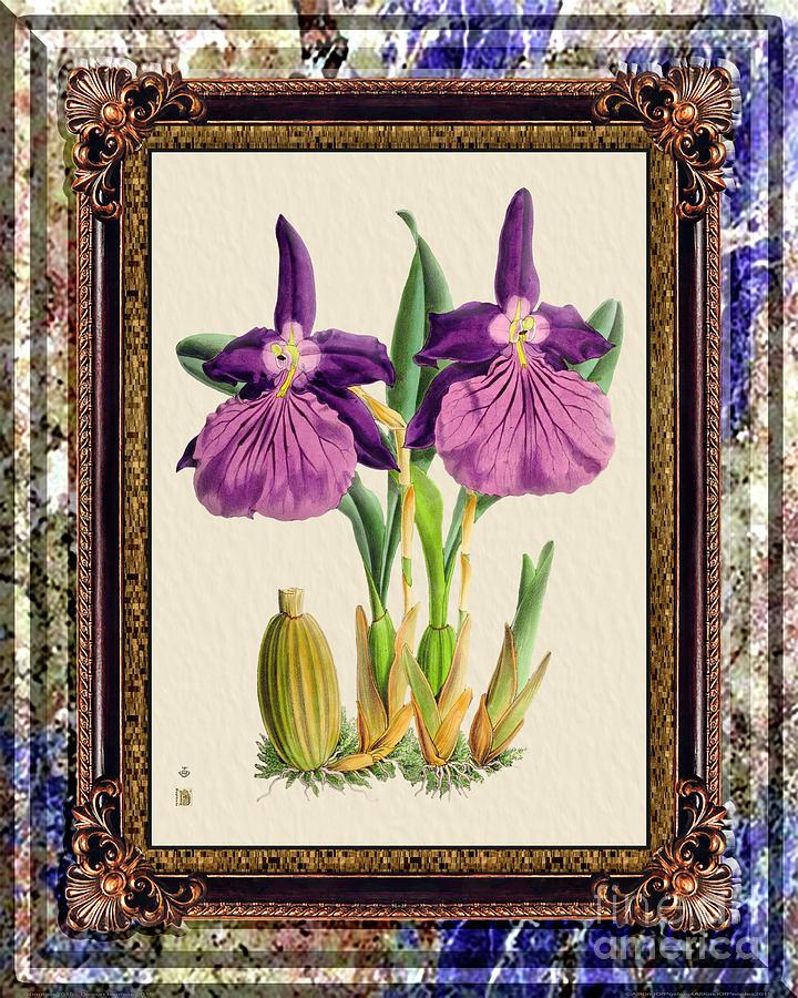 Vintage Orchid Antique Design Marble Purple Painting