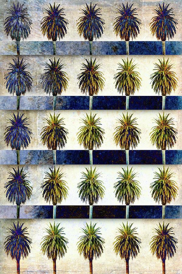 25 Palms by Carol Leigh