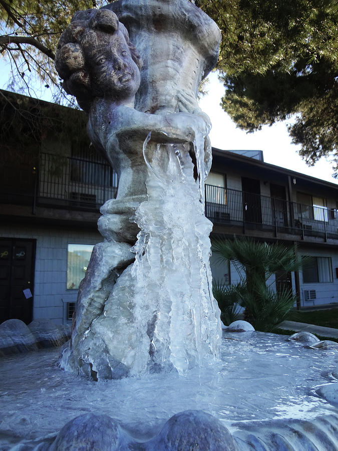 Gardens Photograph - 28 Degrees In Las Vegas by Bruce IORIO
