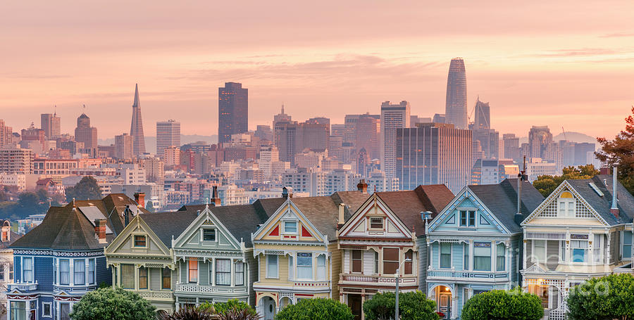 Alamo Square And Painted Ladies Photograph by Spondylolithesis