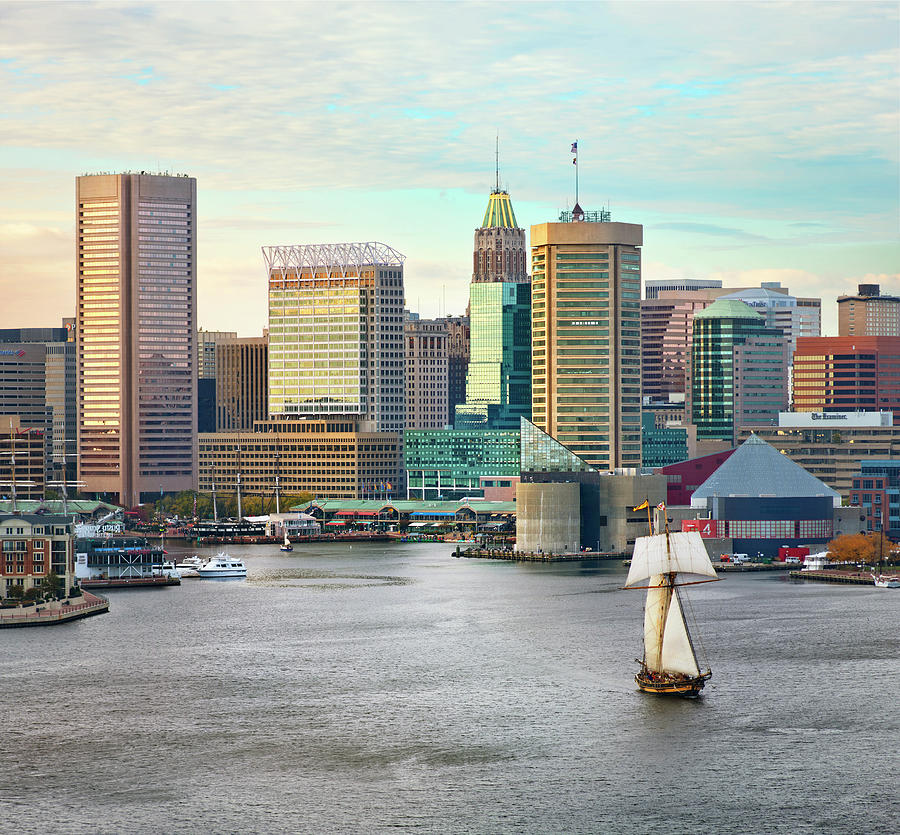 Baltimore Skyline And Inner Harbor Photograph by Greg Pease