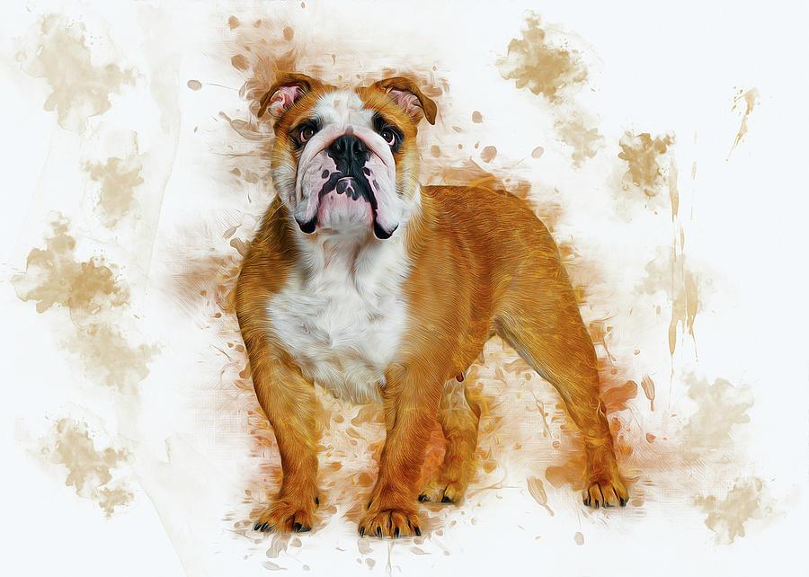 Bulldog by Ian Mitchell