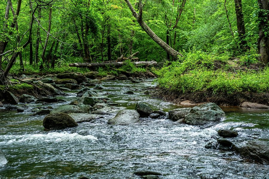 Waterfall Photograph - Fabulous Broad River by Ric Schafer