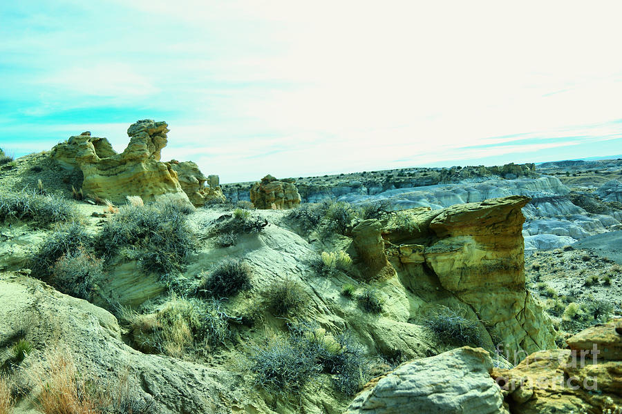 New Mexico Photograph - High Desert Landscape by Jeff Swan