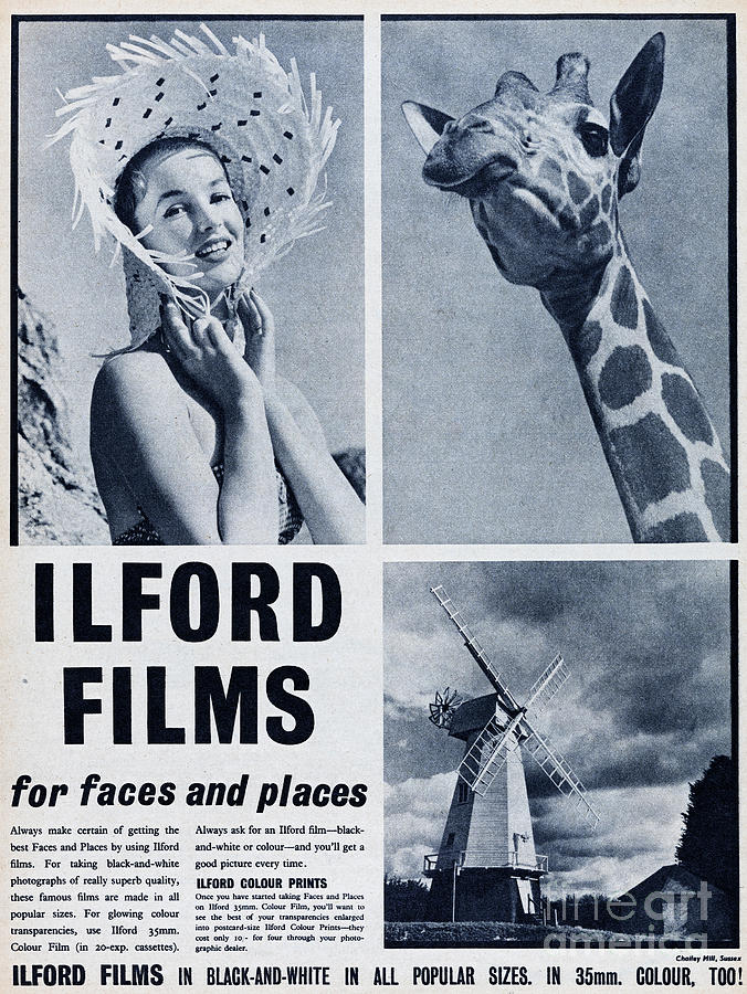 Ilford Films Photograph by Picture Post
