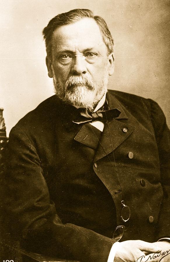 Louis Pasteur Photograph by Paul Nadar