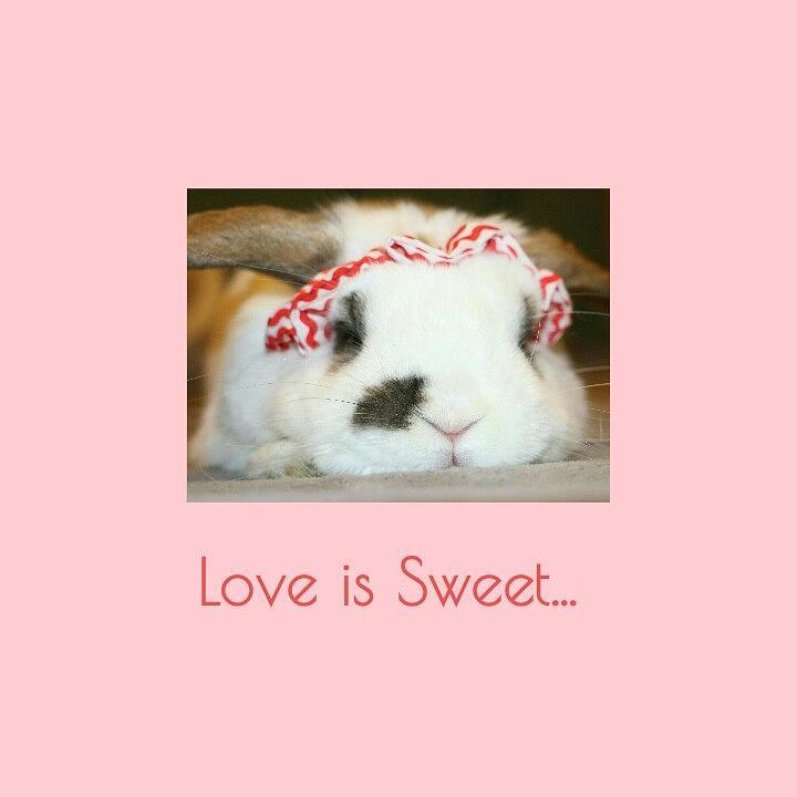 Love is Sweet... by The Art Of Marilyn Ridoutt-Greene