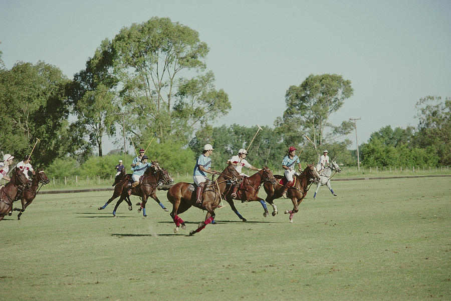 Polo Match 3 Photograph by Slim Aarons