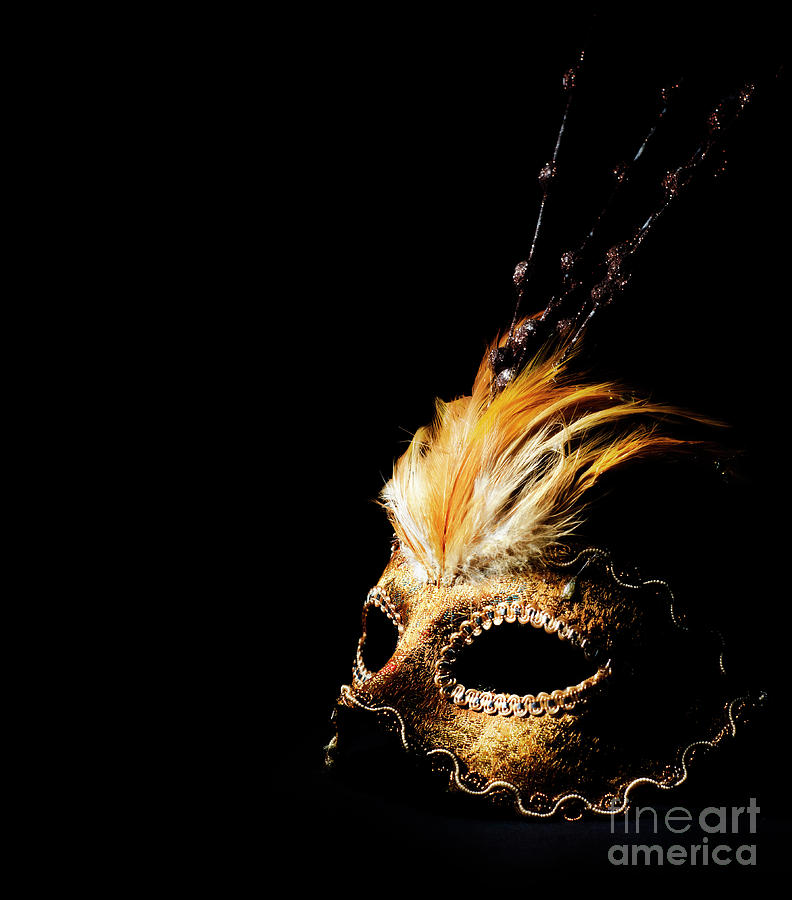 Venetian Mask by Jelena Jovanovic