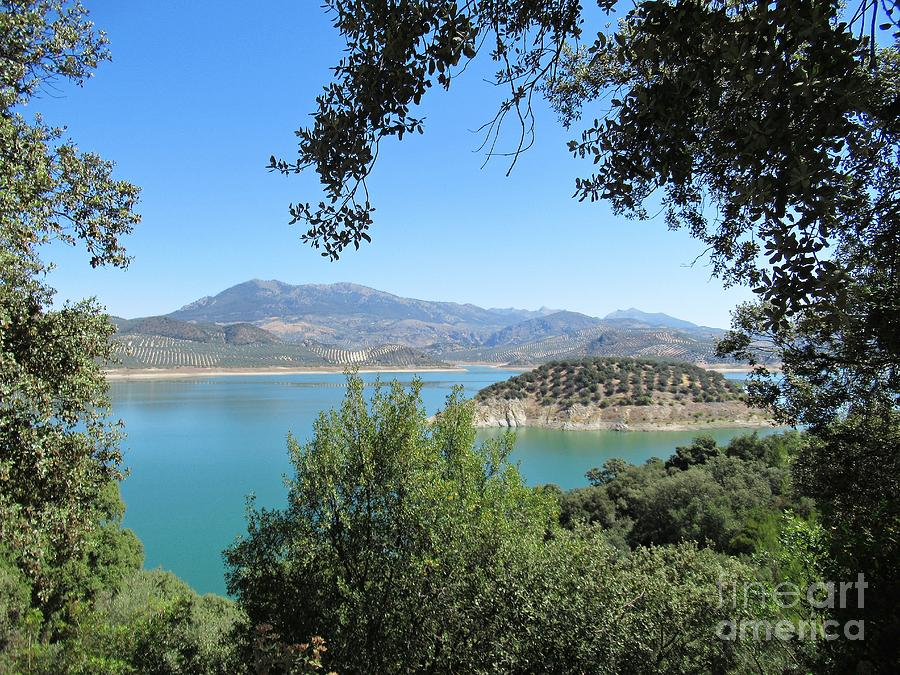 View on the lake near Iznajar by Chani Demuijlder