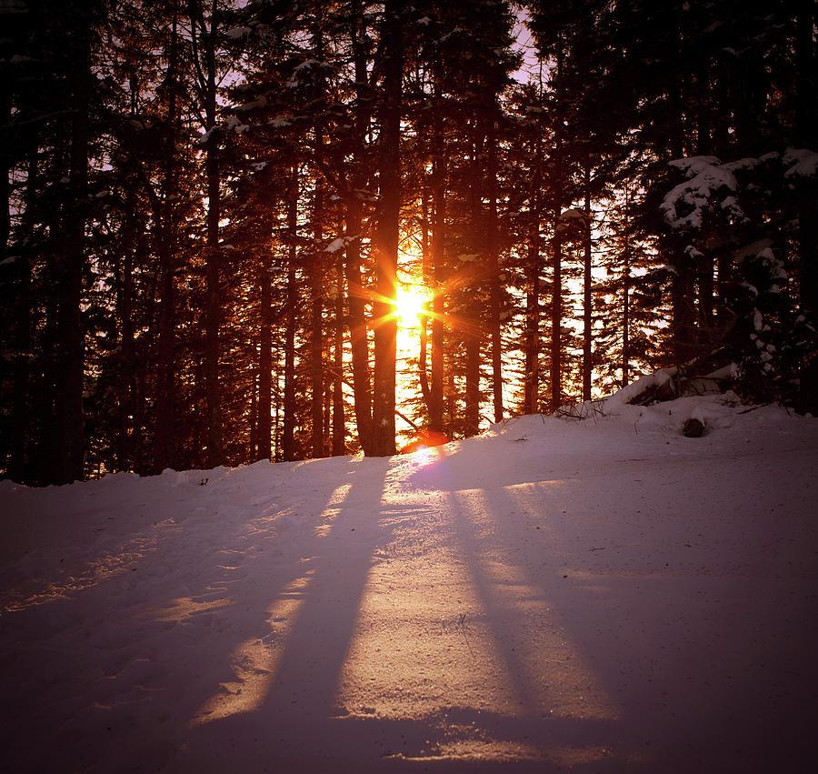 Winter Sunset Photograph by Borchee