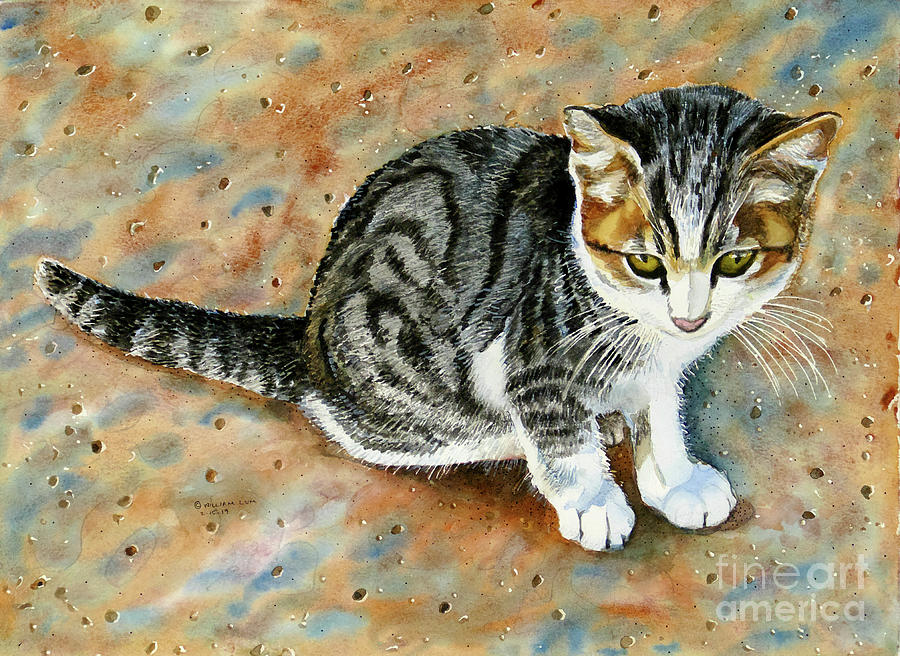 #374 Kitten by William Lum
