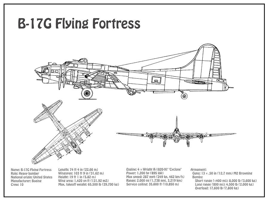 B-17 Flying Fortress - Airplane Blueprint  Drawing Plans For The Wwii  Boeing B-17 Flying Fortress