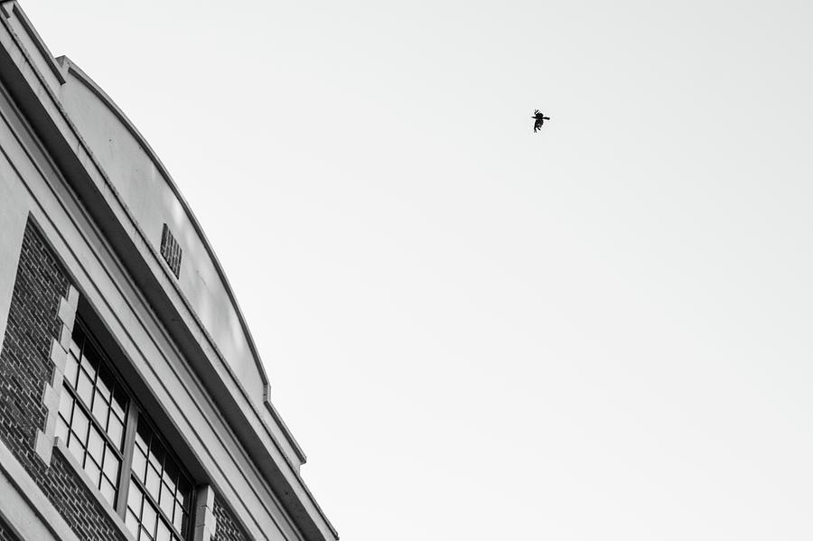 Birds of a Feather by Kolter Gunn