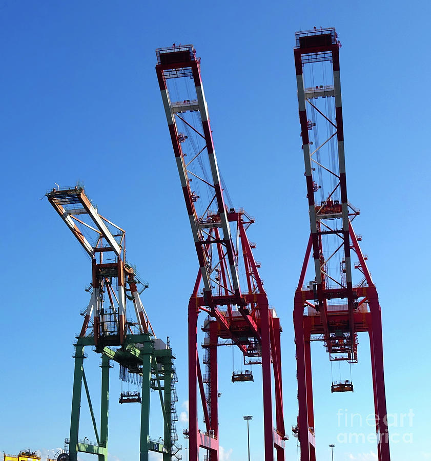 Detail View of Container Loading Cranes by Yali Shi