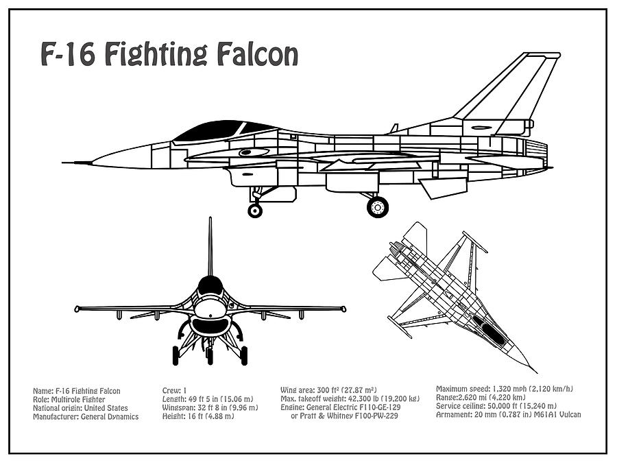 F-16 Fighting Falcon - Airplane Blueprint  Drawing Plans For General  Dynamics F-16 Fighting Falcon