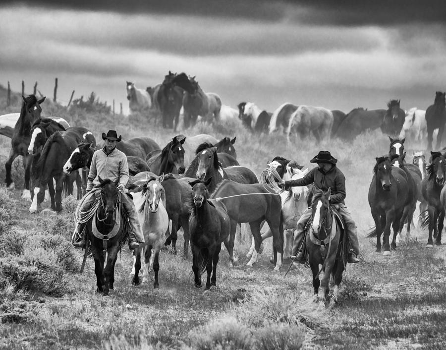 Horse Roundup by MICHAEL LUSTBADER