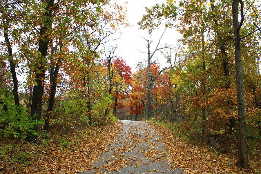 Lake Remembrance Trail Photograph