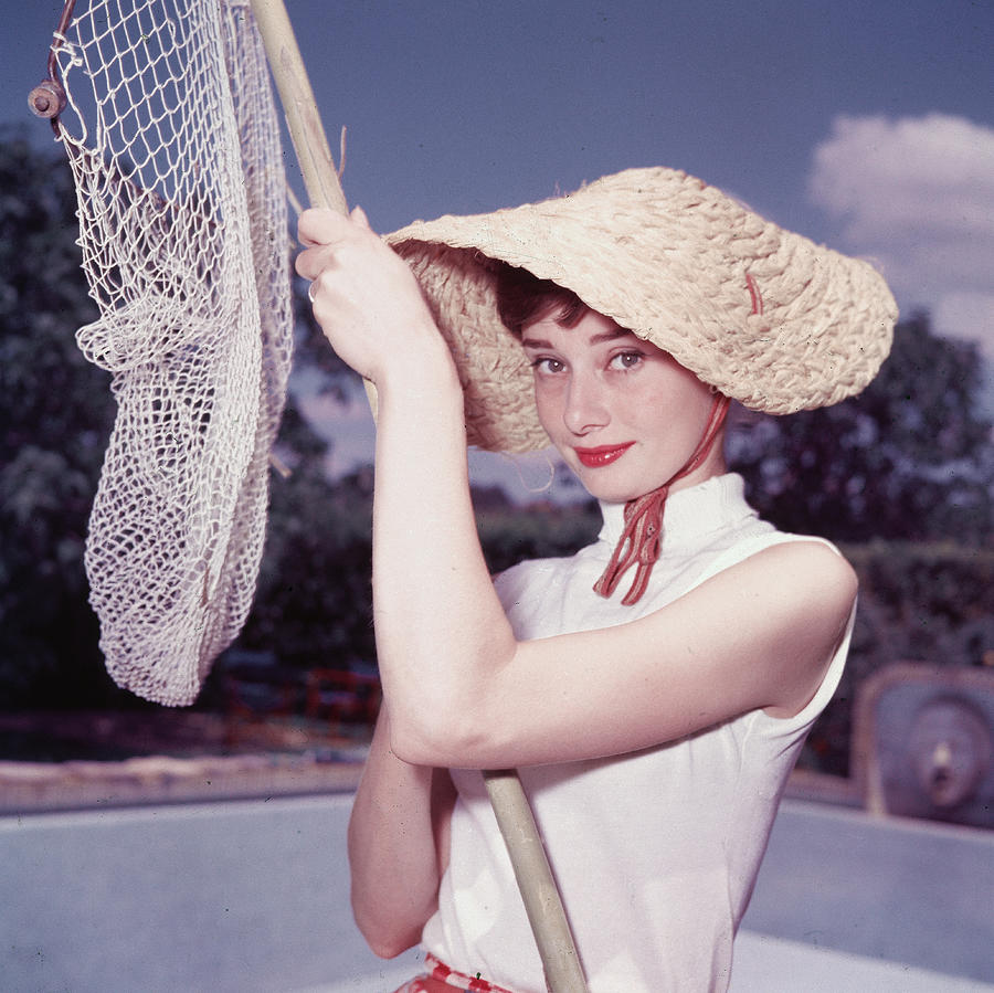 Portrait Of Audrey Hepburn Photograph by Hulton Archive