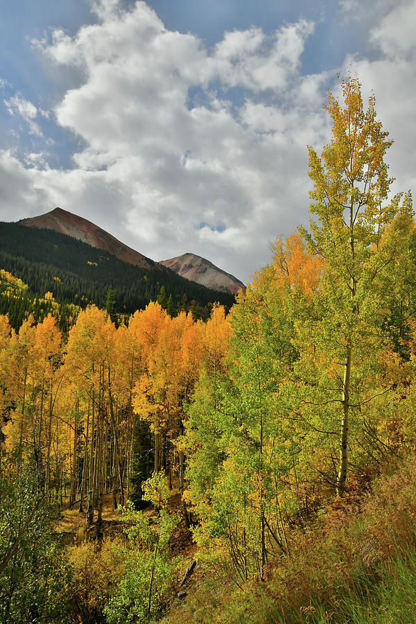 Red Mountain Fall Colors Photograph