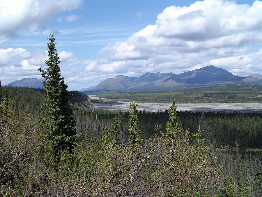 Tetlin National Wildlife Refuge Alaska Photograph
