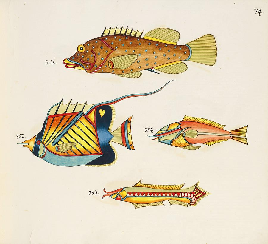 Tropical Fishes Of The East Indies Painting