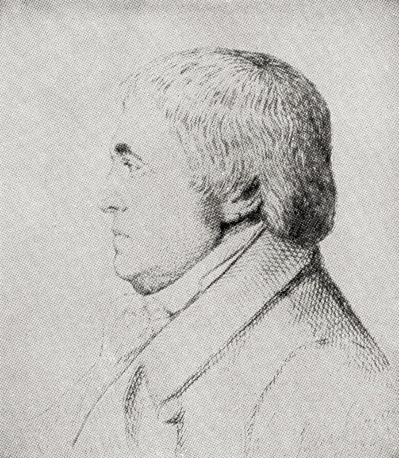 18th Drawing - Lt. General William Warre, 1784-1853. British Lieutenant-general During The Penninsular War by Ken Welsh