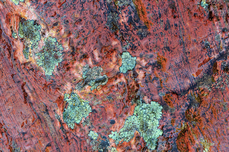 Abstract Photograph - Large Naturally Polished Rock 41 by Stuart Westmorland