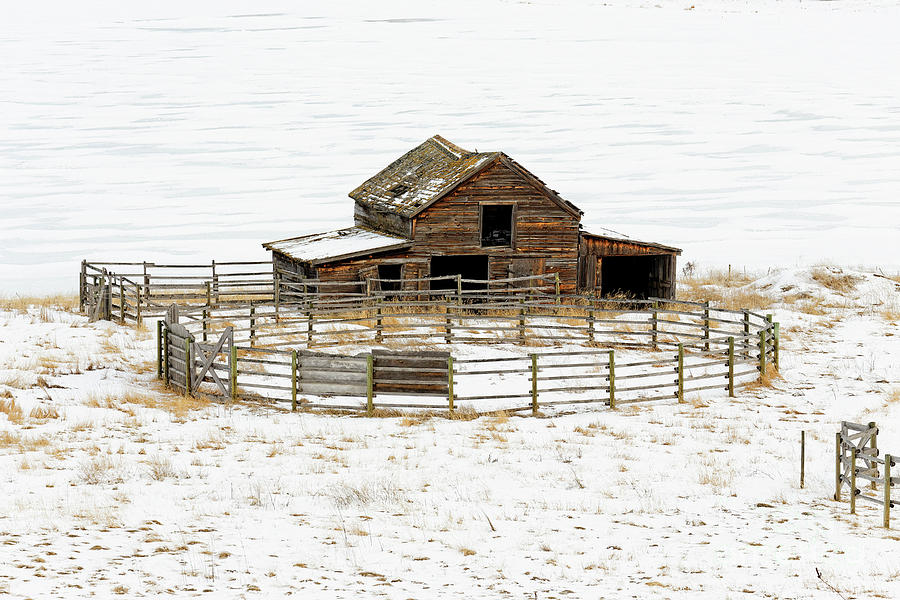 41,674.04209 FZ weathered old barn, corral fence winter snow SC by Robert C Paulson Jr