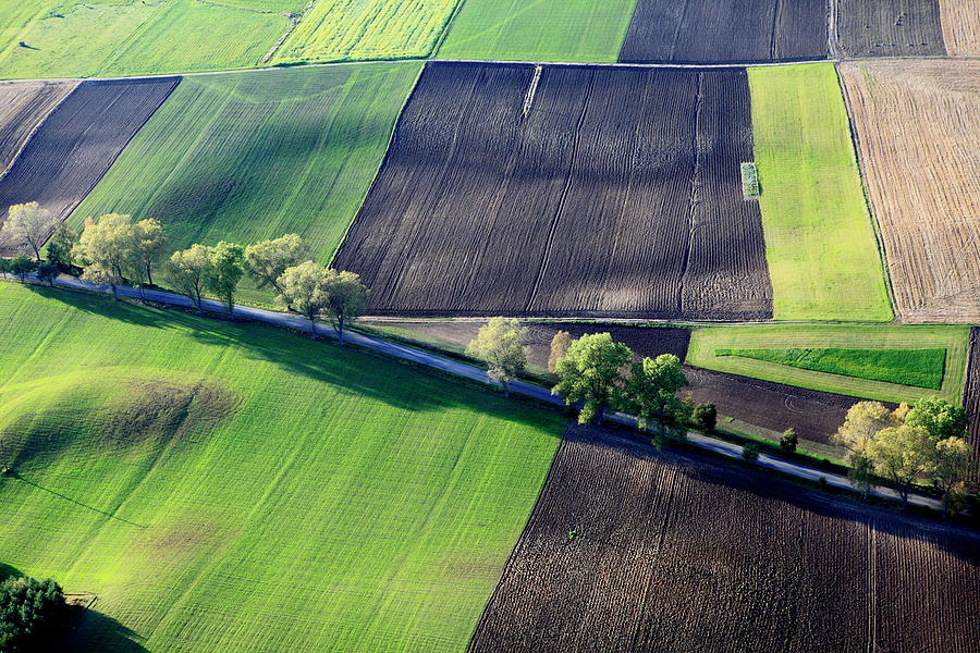 Aerial Photo Of Farmland Photograph by Dariuszpa