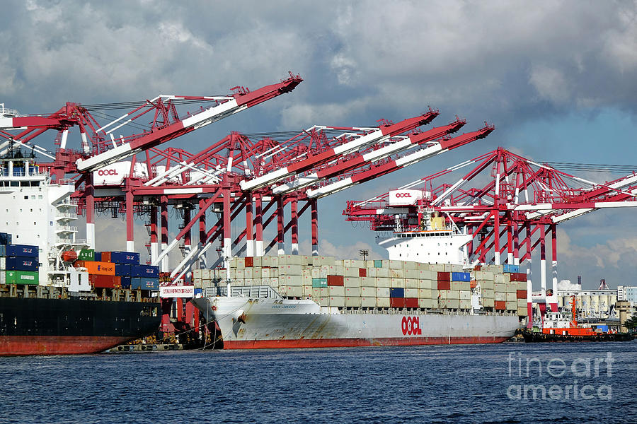 Containers Are Loaded Onto Ships in  Kaohsiung Harbor by Yali Shi