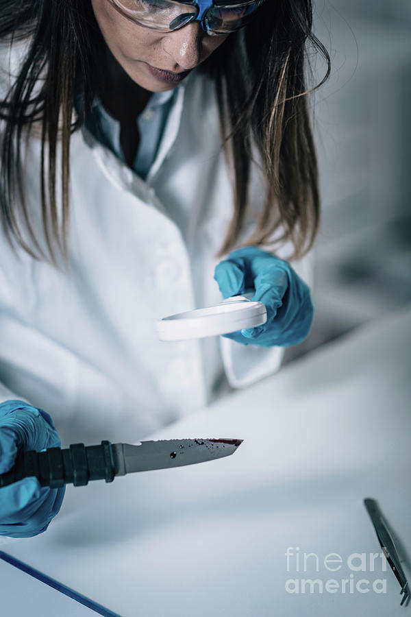 Forensics Expert Examining Crime Scene Evidence Photograph By Microgen Images Science Photo Library