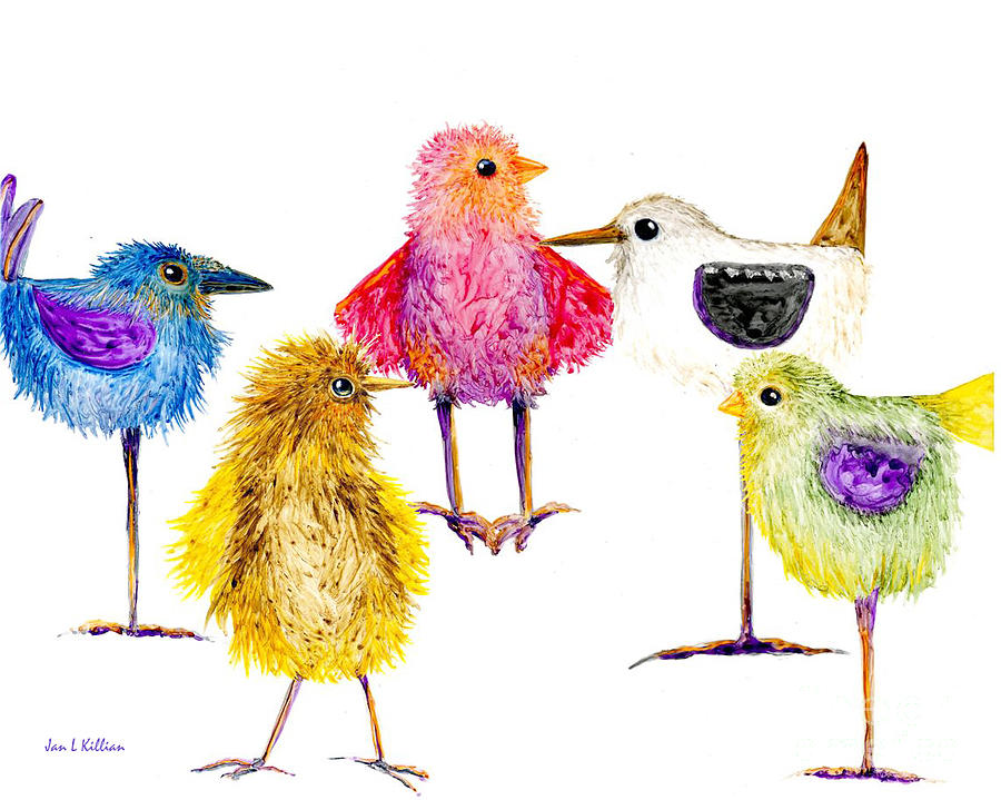 5 Silly Birds by Jan Killian
