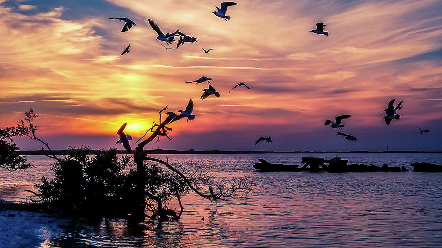 Sunset Photograph - Sunset Over The Bay by Ric Schafer