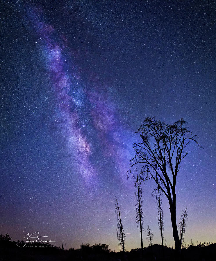 Astrophotography Photograph - The Milky Way by Jim Thompson