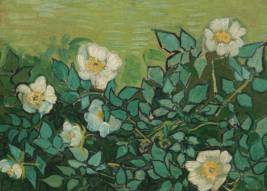 Wild Roses Painting By Vincent Van Gogh