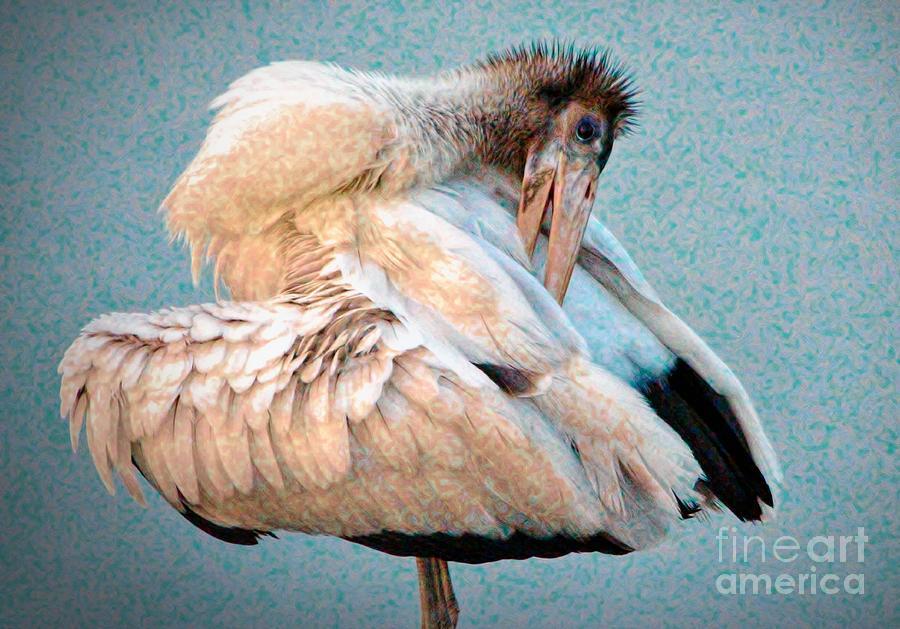Wood Stork by Paulette Thomas