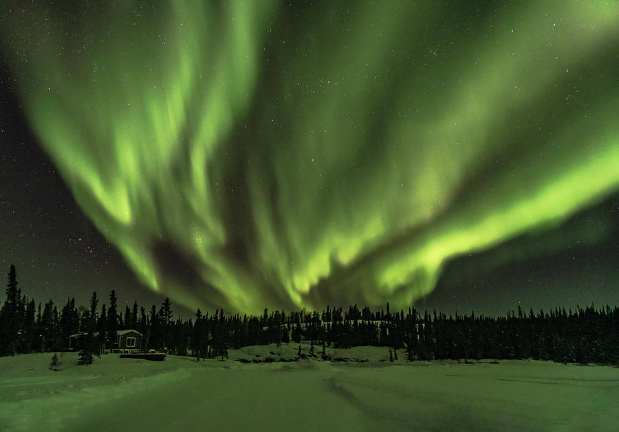 Northern Lights by Laura Hedien